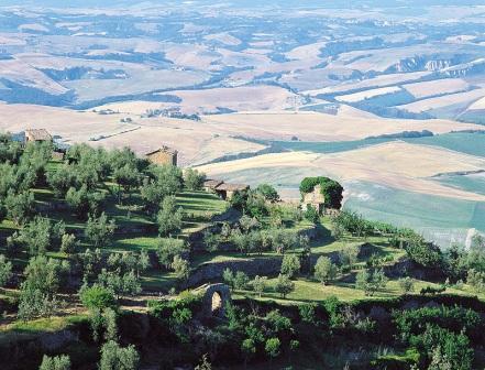 Montalcino Ieri - Libri - Index
